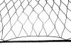 wontony, sieci rybackie